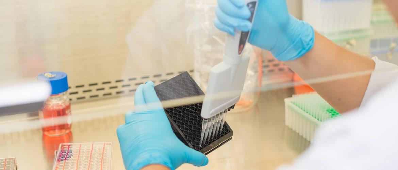 kök hücre tedavisi, kök hücre nedir, kök hücre, kök hücreler, kök hücre tadavisi nasıl yapılır, kök hücre bağışı, kök hücre tedavisine başlamadan önce bilinmesi gerekenler,